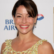 Emmanuelle Vaugier at the 7th Annual BAFTA-LA TV Tea Party. Intercontinental Hotel, Century City, CA. 09-19-09 — Stock Photo