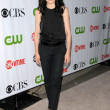 Stock Photo: JuliannMargulies at CBS, CW and Showtime All-Star Party. Huntington Library, Pasadena, CA. 08-03-09