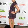 Stock Photo: Katie Cassidy at CBS, CW and Showtime All-Star Party. Huntington Library, Pasadena, CA. 08-03-09