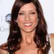 Kate Walsh  at Disney and ABCs TCA All Star Party. Beverly Hilton Hotel, Beverly Hills, CA. 07-17-08 - Stockfoto