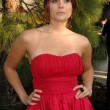 Joanna Garcia at the 8th Annual Chrysalis Butterfly Ball, Private Residence, Los Angeles, CA. 06-06-09 - 图库照片