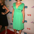 Adrianne Palicki  at the NBC Universal 2008 Press Tour All Star Party. Beverly Hilton Hotel, Beverly Hills, CA. 07-20-08 - 图库照片
