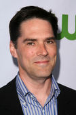 Thomas Gibson — Stock Photo