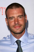 Scott Foley — Stock Photo