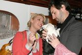 Katherine Heigl and Josh Kelley at the Mutts to Melrose Orangebone Pet Store Grand Opening. Orangebone, Hollywood, CA. 02-11-09 — Stock Photo