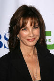 Anne Archer — Stock Photo