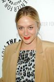 Chloe Sevigny — Stock Photo