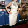 Erika Christensen at the 4th Los Angeles Italia Film Fashion and Art Festival. Mann Chinese 6 Theatre, Hollywood, CA. 02-15-09 - Stock Photo
