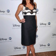 Stock Photo: Kate Walsh at Disney and ABCs TCAll Star Party. Beverly Hilton Hotel, Beverly Hills, CA. 07-17-08