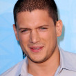 Wentworth Miller — Foto de Stock
