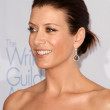 Kate Walsh at the 2009 Writers Guild Awards. Century Plaza Hotel, Century City, CA. 02-07-09 - Stock Photo