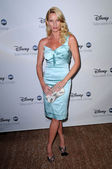 Nicollette Sheridan — Photo