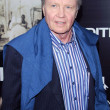 Jon Voight — Stock Photo #15905559