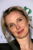 "Julie Delpy at the Gallery Opening of ""Antarctica The Global Warning"". the Jan Kesner Gallery, Hollywood, CA. 11-02-07 — Stock Photo"