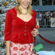 Abby Brammell  at the Fred Claus Los Angeles Premiere. Graumans Chinese Theatre, Hollywood, CA. 11-03-07 - Foto Stock