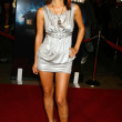 "Stock Photo: Bai Ling at premiere of ""Somebody Help Me"". Grauman's Chinese Theatre, Hollywood, CA. 10-25-07"