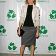 Elizabeth Banks at &quot;An Evening Under the Harvest Moon&quot; TreePeople&#039;s Annual Gala Fundraiser. Warner Bros. Studios, Burbank, CA. 10-13-07 - Zdjcie stockowe