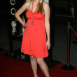 Aimee Teegarden  at the Los Angeles premiere of 10,000 B.C.. Graumans Chinese Theatre, Hollywood, CA. 03-05-08 - Stock Photo