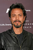 Benjamin Bratt — Stock Photo
