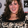Kaycee Stroh at the Los Angeles premiere of &quot;Sydney White&quot;. Mann Bruin Theatre, Westwood, CA. 09-20-07 - Zdjcie stockowe