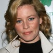 "Elizabeth Banks at ""An Evening Under the Harvest Moon"" TreePeople's Annual Gala Fundraiser. Warner Bros. Studios, Burbank, CA. 10-13-07 - ストック写真"