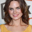Emily Deschanel at the FOX Fall Eco Casino Party. Area Nightclub, Los Angeles, CA. 09-24-07 - Stock Photo