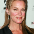 Elizabeth Perkins at the 59th Annual Emmy Awards Nominee Reception. Pacific Design Center, Los Angeles, CA. 09-14-07 — 图库照片
