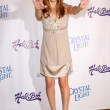 Kelly Preston  at the Step Up Womens Network 2008 Inspiration Awards. Beverly Wilshire Hotel, Beverly Hills, CA. 05-09-08 - Stock Photo