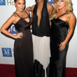 Adrienne Bailon with Kiely Williams and Sabrina Bryan at the 2007 Spirit Of Life Awards Dinner hosted by Hilary Duff. Pacific Design Center, West Hollywood, CA. 09-27-07 - Zdjęcie stockowe