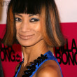 Bai Ling at the 2nd Annual Design for Humanity Event. Spider Club, Hollywood, CA. 06-04-08 — Stock Photo