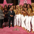 Постер, плакат: Johnny Grant and the Victoria Secret Angels at a ceremony honoring the Victorias Secret Angels with the Hollywood Award of Excllence Hollywood Boulevard Hollywood CA 11 13 07