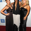 Adrienne Bailon with Kiely Williams and Sabrina Bryan at the 2007 Spirit Of Life Awards Dinner hosted by Hilary Duff. Pacific Design Center, West Hollywood, CA. 09-27-07 — Stock Photo