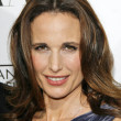 Andie MacDowell — Stock Photo #15943221