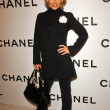 ������, ������: Kelly Carlson at the Chanel and P S Arts Party Chanel Beverly Hills Boutique Beverly Hills CA 09 20 07