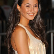"Emmanuelle Chriqui at the Los Angeles Premiere of ""The Heartbreak Kid"". Mann Village Theatre, Westwood, CA. 09-27-07 — Stock Photo"