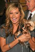Ashley Tisdale — Stock Photo