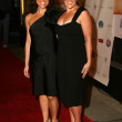Abby Epstein and Ricki Lake  at the Premiere of The Business of Being Born. Fine Arts Theater, Beverly Hills, CA. 01-14-07 - Zdjcie stockowe