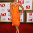 Adrianne Curry at the 2007 TV Guide Emmy After Party. Les Deux, Hollywood, CA. 09-16-07 - Stock fotografie