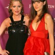Постер, плакат: Kathleen Robertson and Zooey Deschanel at the Premiere of SciFi Networks Tin Man Cinerama Dome Hollywood CA 11 27 07