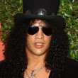 Stock Photo: Slash