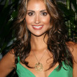 Stock Photo: Katie Cleary at Verizon Palm Centro Launch Party. Elevate Lounge, Los Angeles, CA. 06-26-08