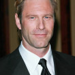 Stock Photo: Aaron Eckhart at 59th Annual Directors Guild of AmericAwards. Hyatt Regency Century Plaza, Century City, CA. 02-03-07