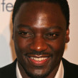 Adewale Akinnuoye-Agbaje at the BAFTA LA Tea Party. Four Seasons Hotel, Los Angeles, CA. 01-14-07 — Stock Photo