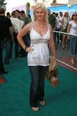 Alison sweeney — Photo
