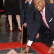 Forest Whitaker Hollywood Walk of Fame Ceremony - Stock Photo