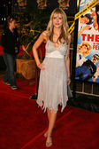 Kathryn Fiore at the premiere of Reno 911. Miami. Graumans Chinese Theatre, Hollywood, 02-15-07 — Stock Photo