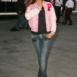 Adriana Lima at the arrival of the Victorias Secret Models via Private Jet to Burbanks Bob Hope Airport, Burbank, CA 11-14-06 - Stock Photo