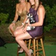 "Stock Photo: ""Bow Wow Wow"" Celebrity Fundraiser For Much Love Animal Rescue"