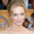 Постер, плакат: Heather Graham