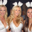 Stock Photo: Playboy Golf Finals Party
